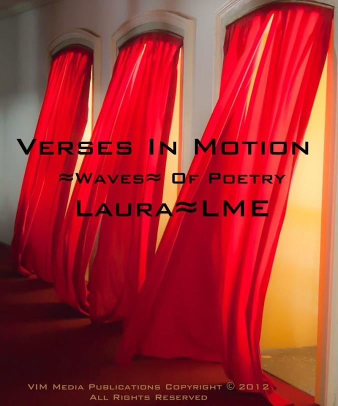 VIM cover