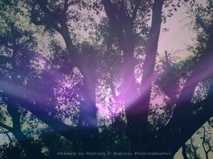 Whispers 2 aurora effect