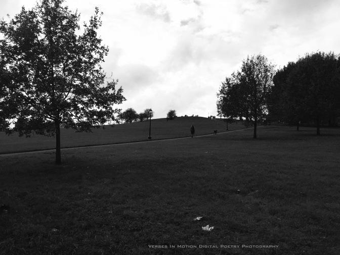 Silence Primrose Hill